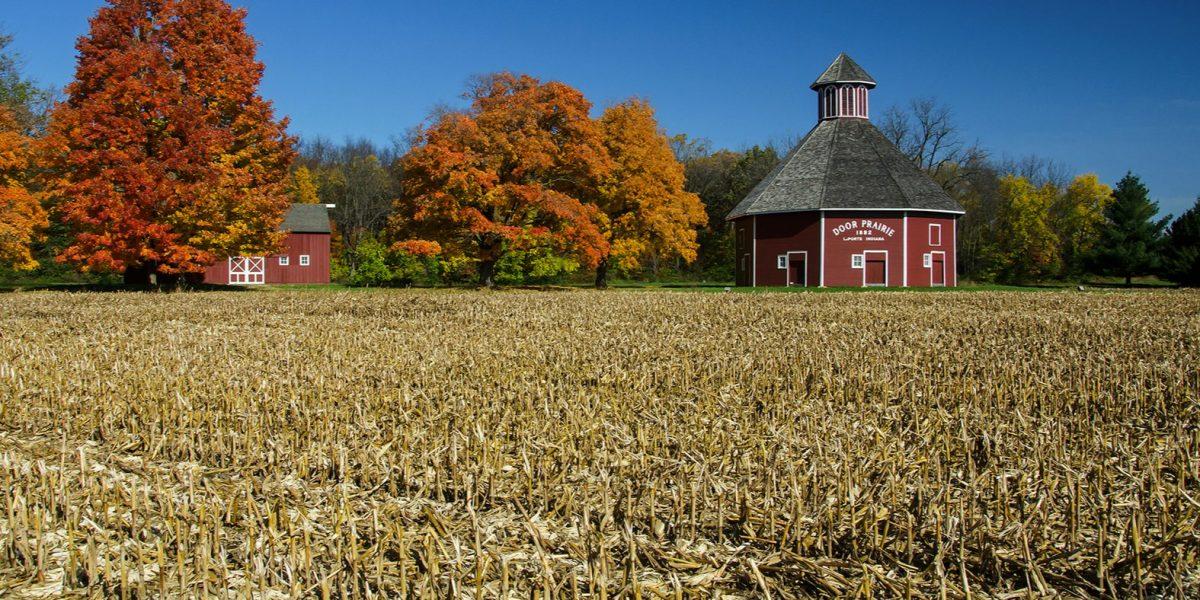 Rural_Tom Gill